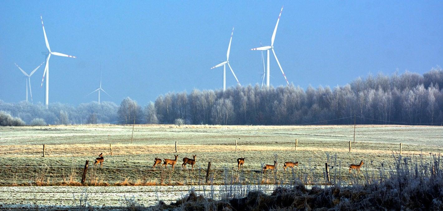 asset-gallery-winergy-poland-wind-farm-winter